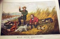 A.F. Tait Wild Duck Shooting