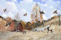 Ed King_ English Setter Hunting Quail