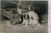 1900_6