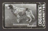 1901_1