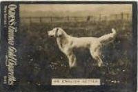 1902_3