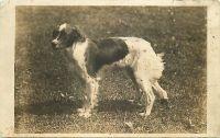 1908_3