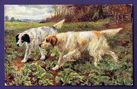 1910_4