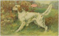 1916_1
